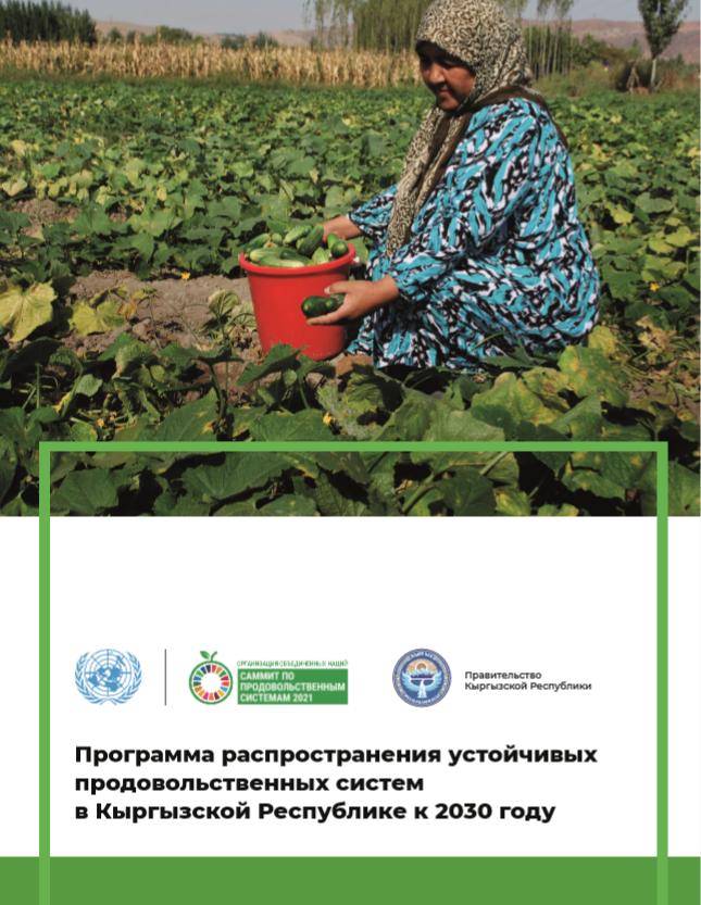 FSSD report cover